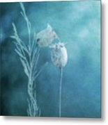 Dried Nigella Damascena As Dreamlike Characters Metal Print by Alexandre Fundone