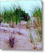 Dunes Metal Print by Susan Carella