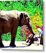 Elephant-parrot Dialogue Metal Print by Rom Galicia