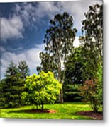 English Countryside  Metal Print by Adrian Evans