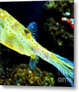 Exotic Fish Metal Print by Pravine Chester