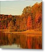 Fall At Patoka Metal Print by Brandi Allbright