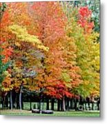 Fall In Michigan Metal Print by Optical Playground By MP Ray