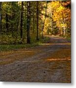 Fall Is Just Around The Corner Metal Print by Thomas Young