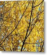 Fall Trees Art Prints Yellow Autumn Leaves Metal Print by Baslee Troutman