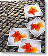 Fallen Autumn  Prints Metal Print by Carlos Caetano