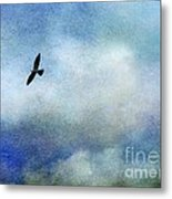 Far Above Metal Print by Judi Bagwell