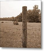Fence And Field Metal Print by Sheila Harnett