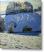 Field Of Shadows Metal Print by Andrew Macara