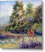 Florida Ibis Landscape Metal Print by Denise Horne-Kaplan