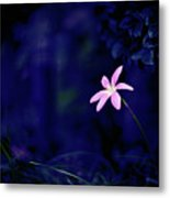 Flower Metal Print by Moaan
