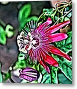 Flower Painting 0001 Metal Print by Metro DC Photography
