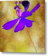 Flower Take Flight Metal Print by Judi Bagwell