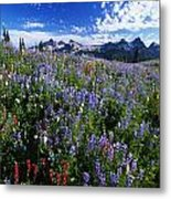 Flowers With Tattosh Mountains, Mt Metal Print by Natural Selection Craig Tuttle