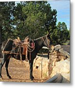 For The Ride Down Metal Print by Heidi Smith