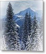 Forest In The Winter Metal Print by Carson Ganci