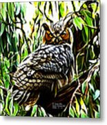 Fractal-s -great Horned Owl - 4336 Metal Print by James Ahn