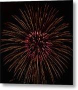 Freedom Flower Metal Print by Richard M Reyes