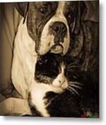 Friendship Is The Greatest Gift Of All Greeting Metal Print by DigiArt Diaries by Vicky B Fuller