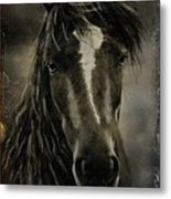 From The Mist Metal Print by Davandra Cribbie