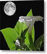 Full Moon Flower Metal Print by Angie Vogel