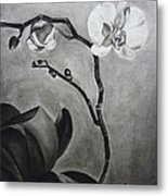 Galen's Orchid Metal Print by Estephy Sabin Figueroa