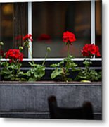 Geranium Flower Box Metal Print by Doug Sturgess
