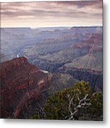 Gnarly Tree In The Canyon Metal Print by Andrew Soundarajan