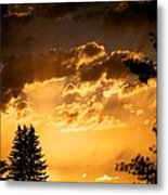 Golden Sky Metal Print by Kevin Bone