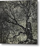 Grabbing Metal Print by Laurie Search