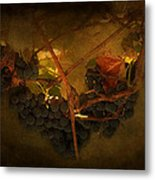 Grapes Metal Print by Peter Labrosse