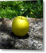 Green Apple Metal Print by David Lee Thompson