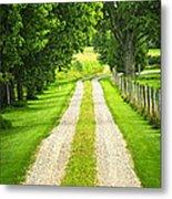 Green Farm Road Metal Print by Elena Elisseeva