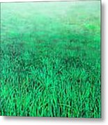 Green Grass Metal Print by Lolita Bronzini