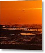 Gulf Coast Sunday Morning Metal Print by Michael Thomas