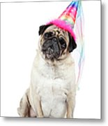 Happy Birthday Metal Print by Mlorenzphotography