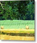 Hay Landscape Metal Print by France Laliberte