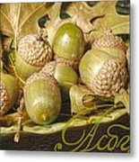 Hdr Green Acorns In A Dish Metal Print by Jennifer Holcombe