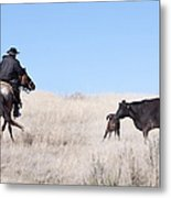 Head 'em Up Metal Print by Cindy Singleton