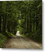 Heading Out Metal Print by Andrew Soundarajan