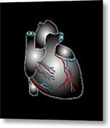 Heart Anatomy, Artwork Metal Print by Francis Leroy, Biocosmos