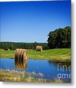 High And Dry On The North Forty Metal Print by The Stone Age