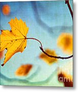 Holding On Metal Print by Darren Fisher