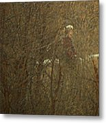 Horseback In The Garden Metal Print by Lenore Senior
