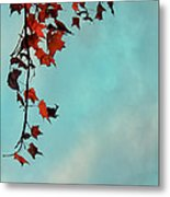 Hot And Cold Metal Print by Aimelle