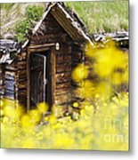 House Behind Yellow Flowers Metal Print by Heiko Koehrer-Wagner