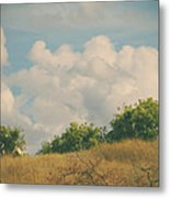 I Exhale And Tell Myself To Smile Metal Print by Laurie Search