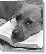I Read My Bible Every Day . Bw Metal Print by Renee Trenholm