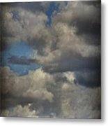 If The World Ends Today Metal Print by Laurie Search