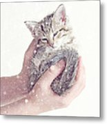 In Safe Hands  Metal Print by Amy Tyler